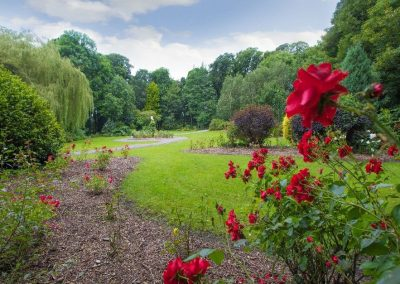 Garden-of-Europe