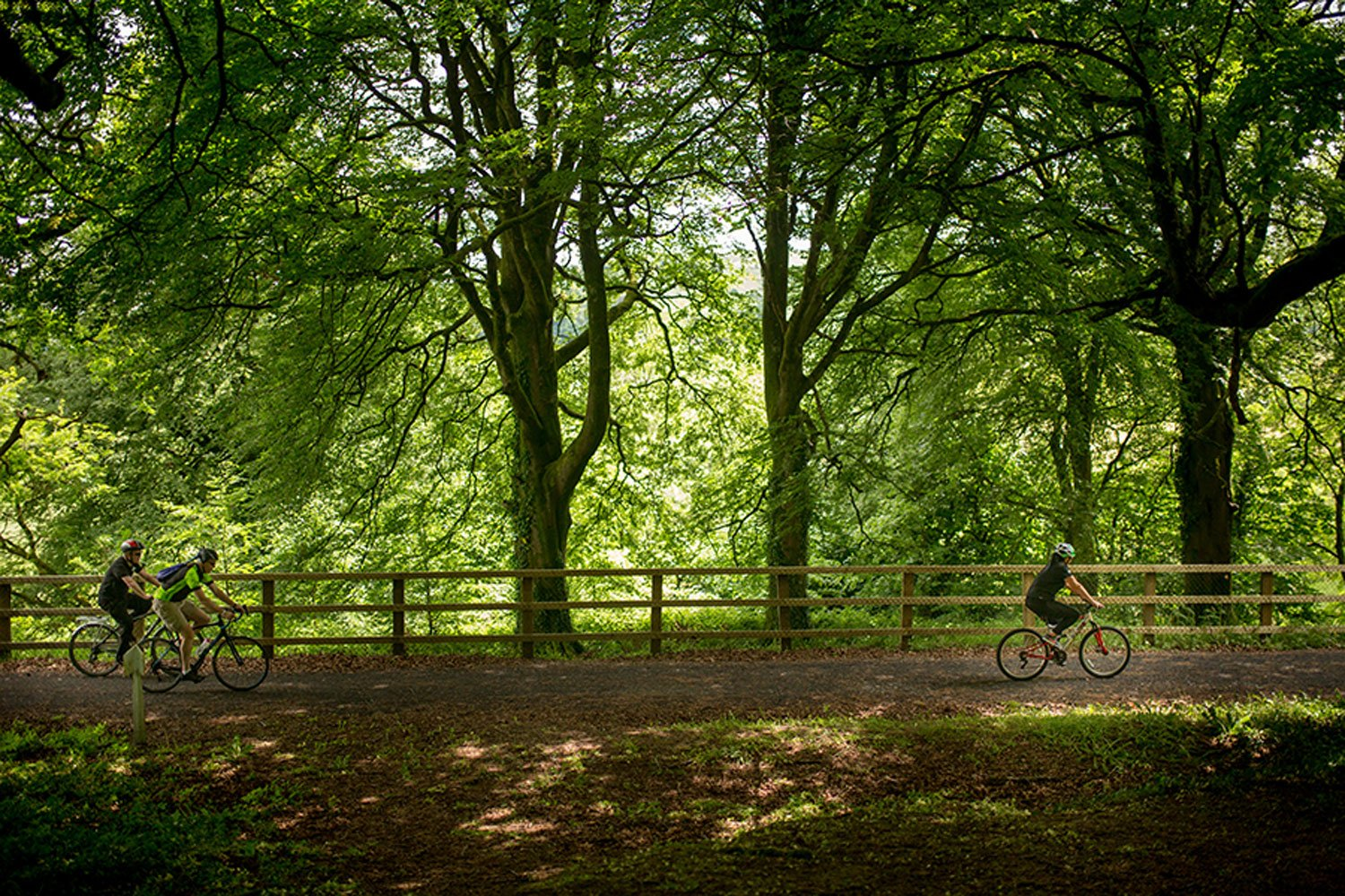 Family cycling the Limerick Greenway, Co Limerick